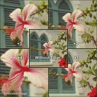 Lvshi 52mm Close-up +2 Filter