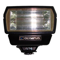 Olympus quick auto flash 310 used